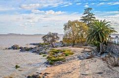海滩在科洛尼亚省,乌拉圭 库存图片