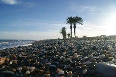 海滩在西班牙 库存照片