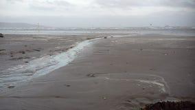 海滩在都伯林 库存图片