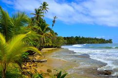 海滩在巴拿马 库存图片