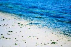 海滨在Algarrobos智利 免版税图库摄影