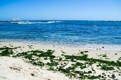 海滨在Algarrobos智利 图库摄影