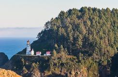 海滩在Heceta头灯塔状态风景区,俄勒冈,美国的某一风景看法 免版税库存照片