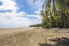 海滩在Marino Ballena Parc,哥斯达黎加 免版税库存照片