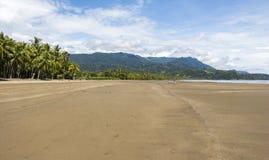海滩在Marino Ballena Parc,哥斯达黎加 库存图片
