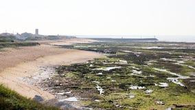 海滩在Oleron海岛,滨海夏朗德省, Poitou-Charentes,法国 免版税库存图片