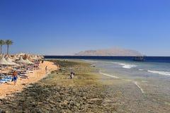 海滩在Sharm El谢赫 免版税图库摄影