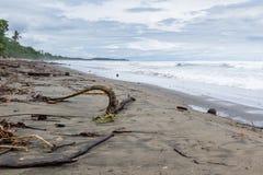 海滩场面在哥斯达黎加 库存照片