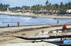 海滩场面,萨尔瓦多,巴西 库存图片