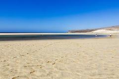 海滩费埃特文图拉岛 库存照片