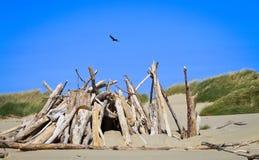 海滩堡垒 免版税库存图片