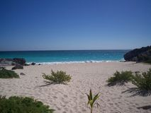 海滩墨西哥tulum 免版税图库摄影