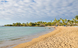 海滩夏威夷人 免版税库存图片
