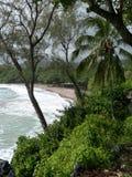 海滩夏威夷毛伊 库存图片