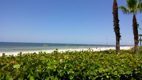 海滩大厦佛罗里达 库存图片