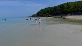 海滩夫妇走 走在海滩微笑的暂挂的新愉快的人种间夫妇在彼此附近 高级 股票录像