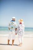 海滩夫妇递藏品前辈 免版税库存照片