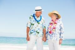 海滩夫妇递藏品前辈 免版税图库摄影