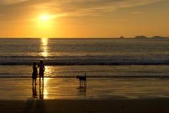 海滩孩子和狗在日落Silgouette 图库摄影