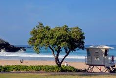 海滩安全 库存照片