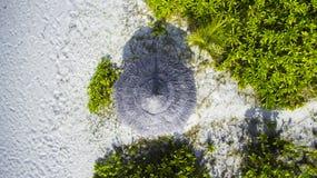 海滩小屋海岛在马尔代夫 免版税库存照片