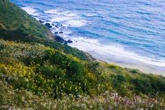 海洋峭壁视图  库存照片
