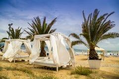 海滩帐篷和棕榈 免版税库存照片