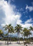 海滩水平的照片沙子风景海运 免版税库存照片