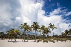 海滩水平的照片沙子风景海运 免版税图库摄影