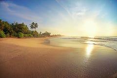 海滩离开的热带 免版税库存图片
