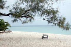 海滩懒人在一棵树下在非洲 免版税库存照片
