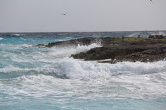 海洋打破反对岩石的Sprary 免版税库存图片