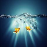 海洋抽象的背景 免版税库存图片