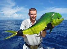 海洋捕鱼 海豚鱼 免版税库存图片