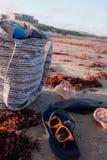 海滩搬运 免版税库存图片