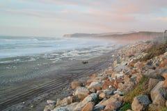 海滩新西兰 库存图片