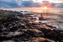 海滩日落的凝思妇女 库存图片