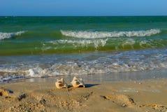 海滩时间海壳 免版税库存图片