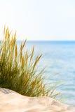 海滩明亮的场面 免版税库存图片