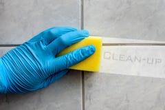 海绵有文本的清洁卫生间 库存图片