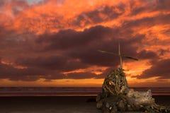 海滩树桩救世 图库摄影
