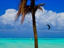 海洋梦想 桑给巴尔 库存图片