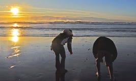 海滩梳 免版税库存照片