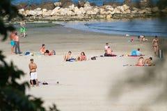 海滩概要 库存图片