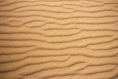 海滩沙子样式 免版税库存照片