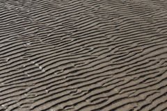 海滩沙波温暖纹理样式背景 免版税库存图片