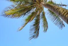 海滩波多里哥 图库摄影