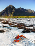 海洋海岸山,挪威 免版税库存照片