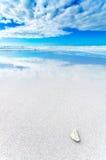 在一个白色海滩的白色岩石在蓝色和多云天空下 库存照片