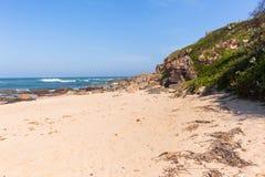 海滩海洋岩石植被海岸线 免版税库存图片
